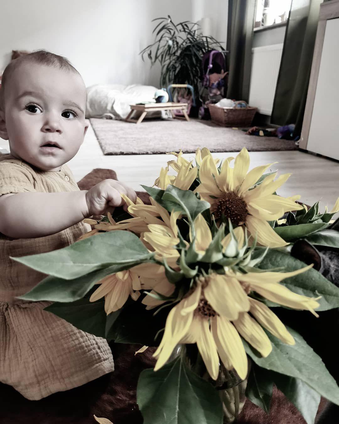 Sonnenblumen. Geräubert 😅🖤 Was sagen uns Sonnenblumen, richtig! Bald ist endlich wieder Herbst 🖤 Kaum zu erwarten ist er.  Ich wünsche euch einen wunderschönen Samstag, ihr Wühlmäuse.