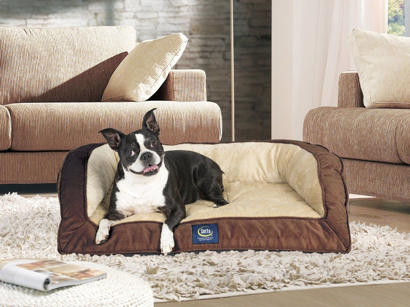 Here Are The Best Dog Beds To Make Your Pup Feel Like Royalty Cool Dog Beds Dog Pet Beds Orthopedic Dog Bed