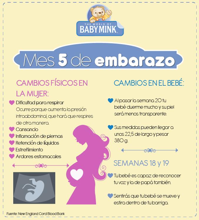 65b59464b Cambios al quinto mes de  embarazo  maternidad  síntomas  maternidad ...