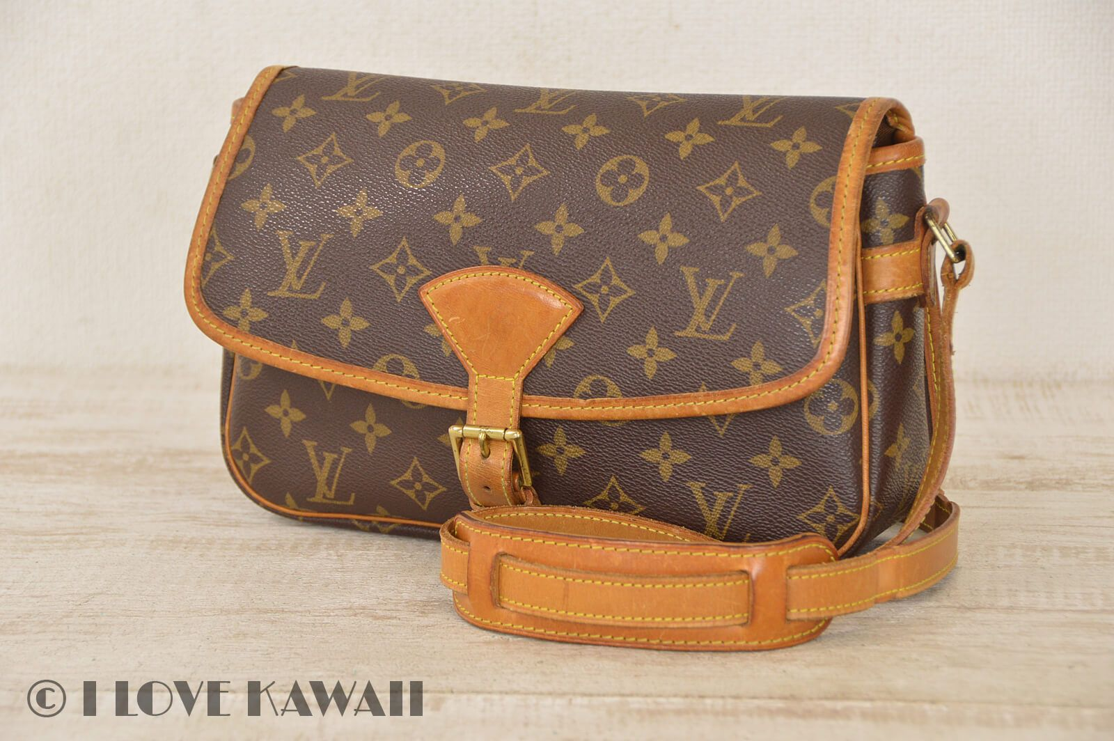 ef80df052555 Louis Vuitton Monogram Sologne Shoulder Bag M42250