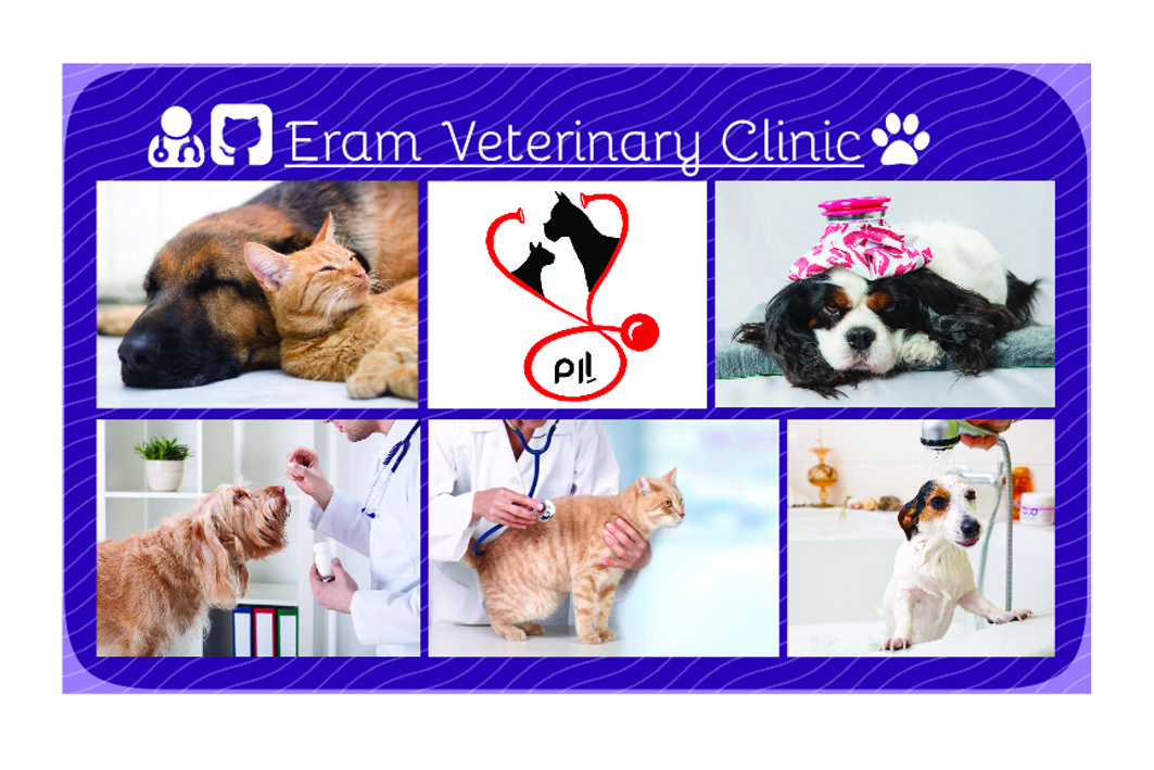 Behind the visit of the Veterinary Clinic Veterinary