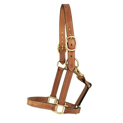 Silverleaf Fancy Halter with Brass Fittings and Leather Halters   EQUESTRIAN COLLECTIONS.COM