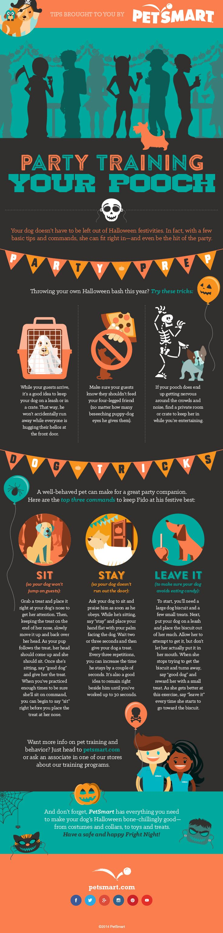 Throwing a #Halloween party? Here are some helpful steps to party ...