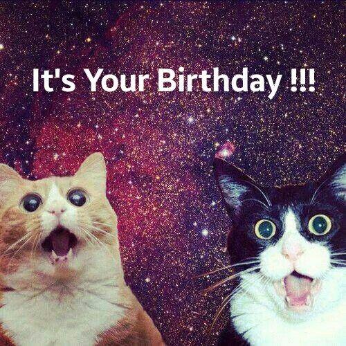 It\u0027s Your Birthday !!!