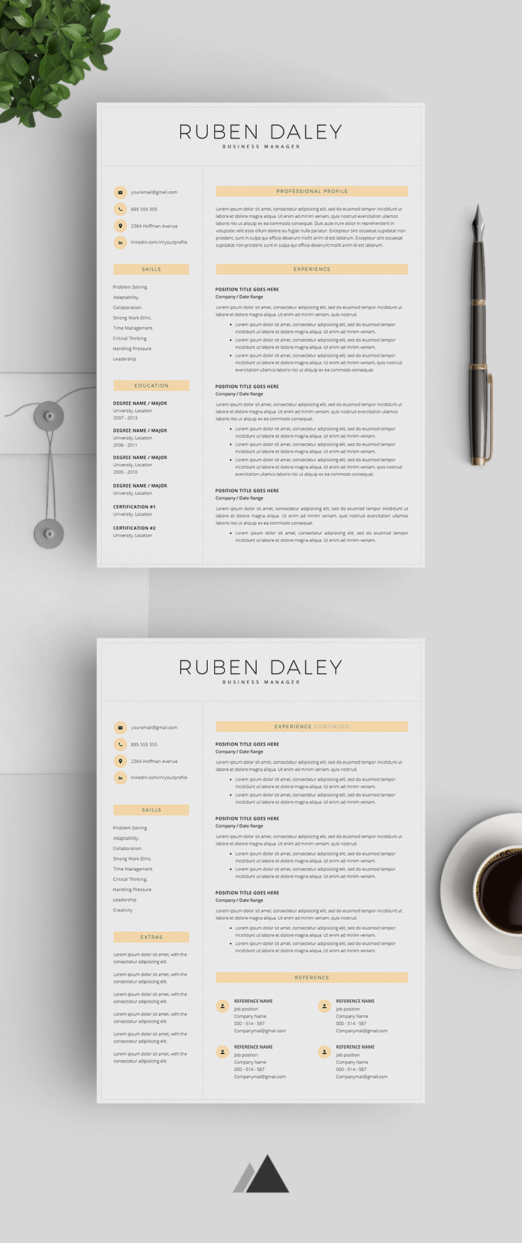 Modern Resume Template For Word Professional Resume