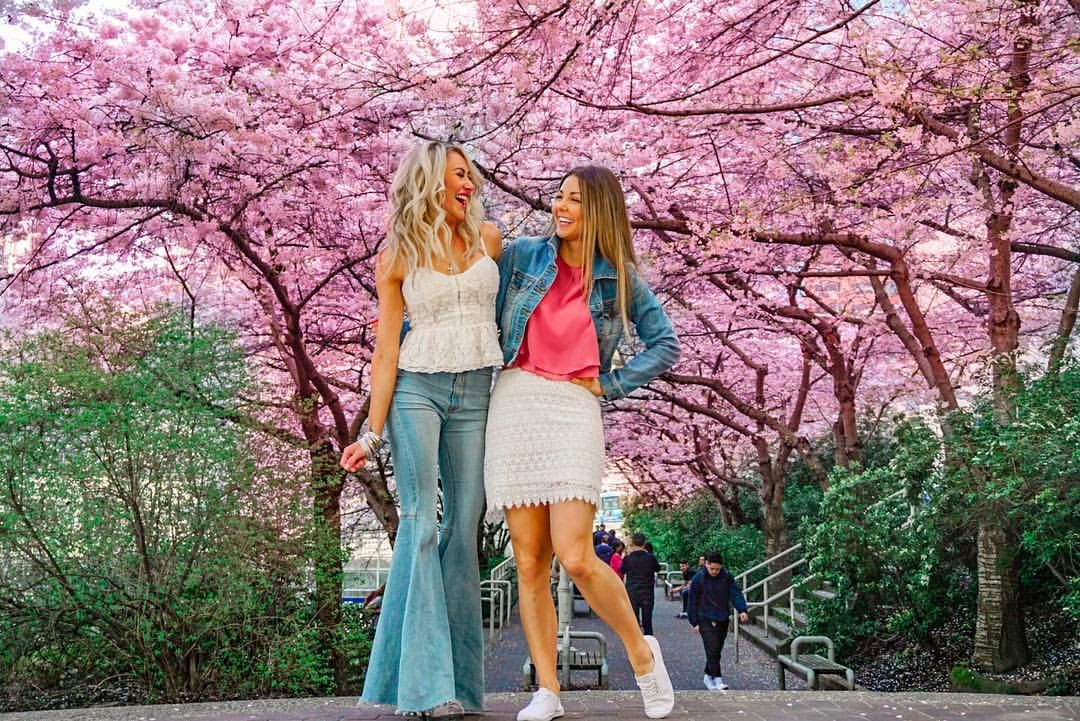 Spring Style 2019 Vancouver Cherry Blossom Festival Cherry Blossom Festival Cherry Blossom Season Cherry Blossom