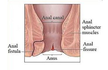Mature milf sex tube