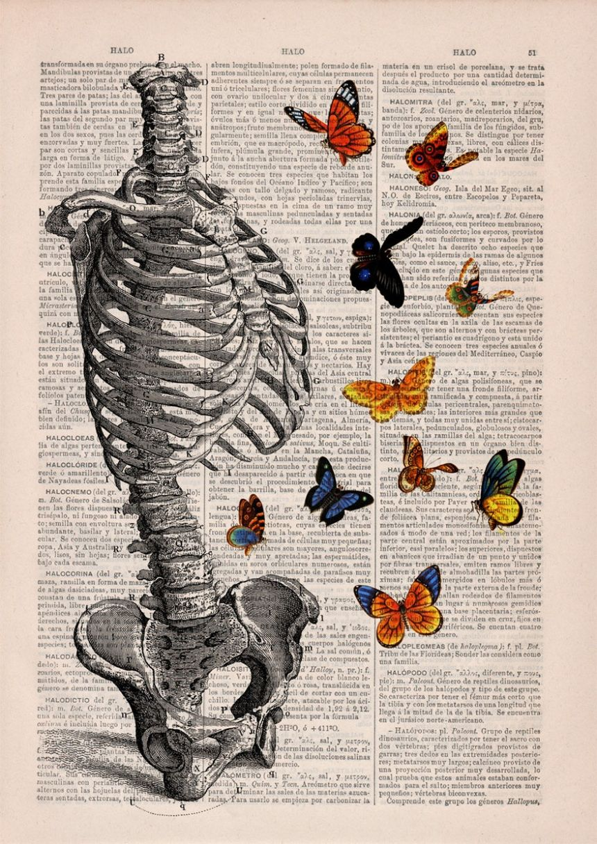 Pages from vintage books transformed through intricate, anatomical ...