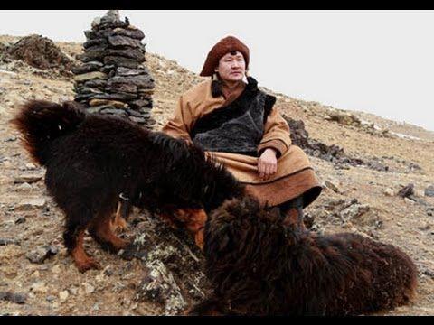 ▶ GANPUREV Dagvan / Mongolian Blood - OST - music by G. Onon - YouTube