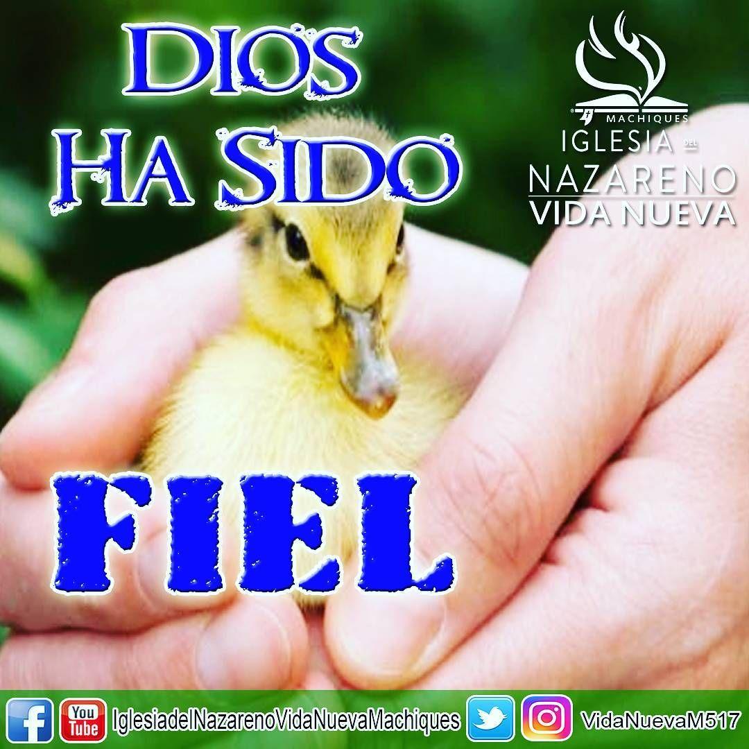 #Dios ha sido #fiel ...