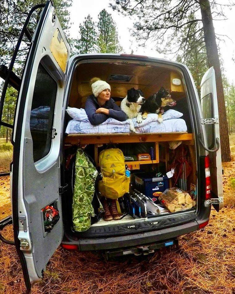 How to van life with a dog van life pet camping campervan