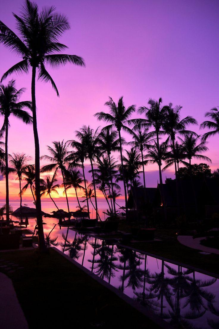 Kupu Kupu Pha Ngan Sunset Wallpaper Sky Aesthetic Beautiful Wallpapers