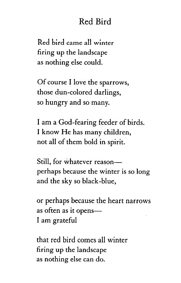 15++ Mary oliver poems short ideas