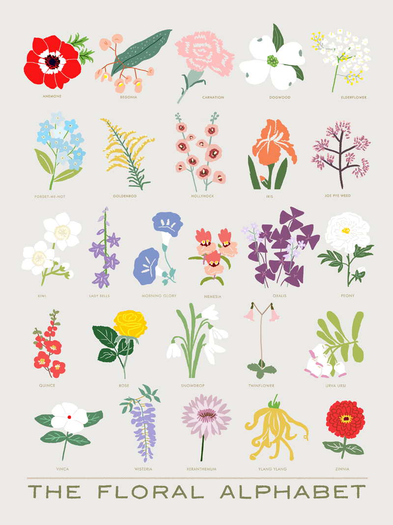 The Floral Alphabet - The Small Object | Картинки