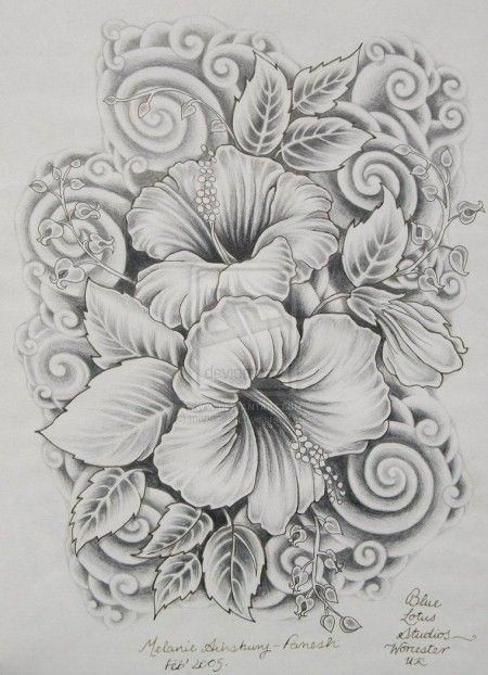 40 Beautiful Flower Drawings and Realistic Color Pencil Drawings ...