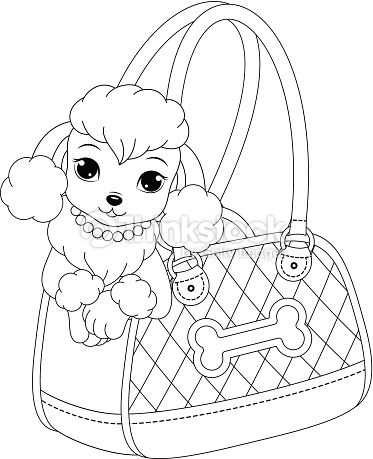 Glamorous Poodle Peeking Out Of A Handbag Poodle Drawing Dog