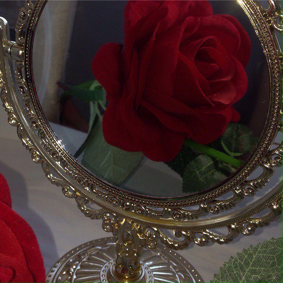 pin bellaxlovee Red aesthetic, Aesthetic, Flowers