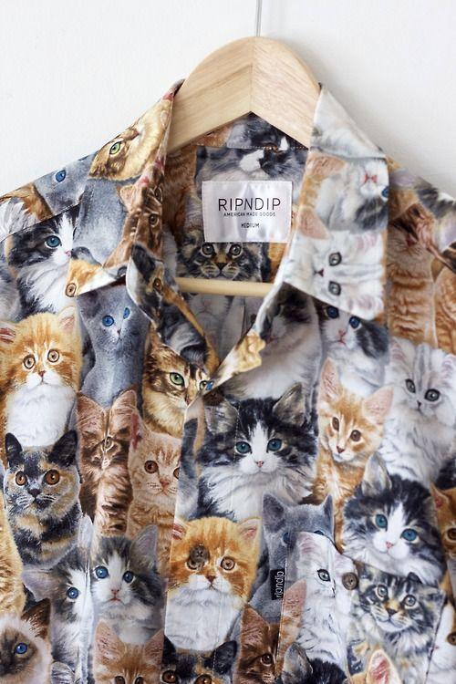 Sooooooo in loveeeeee!!!! Cat shirt!!!!