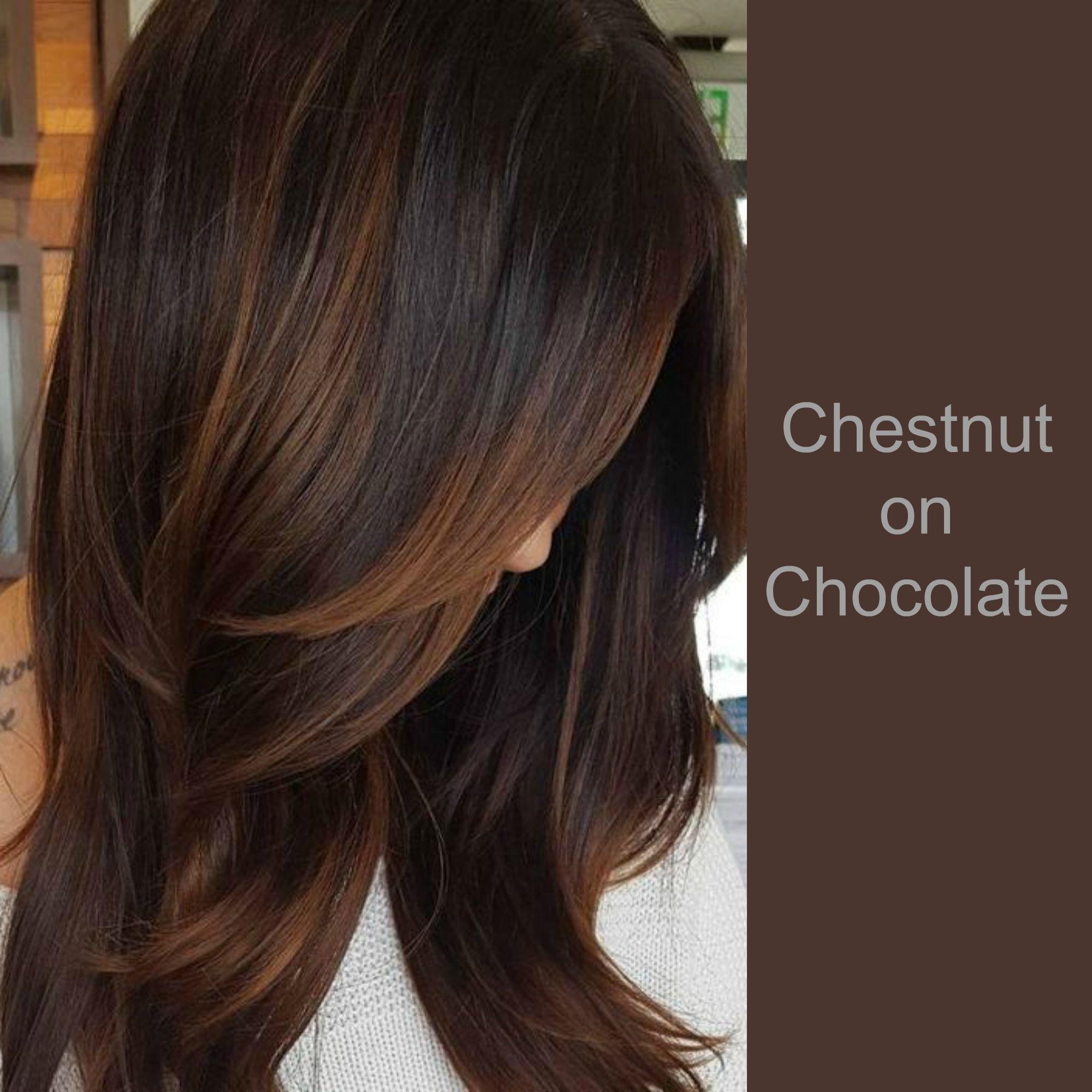Chestnut On Chocolate Hair Brunette Hair Color Chestnut Hair Color Chestnut Hair