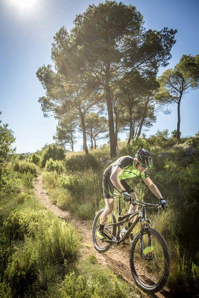 Scott Bike Spark 700