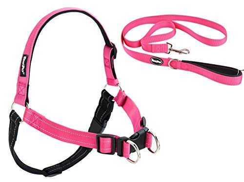No Pull Reflective Dog Harness and Leash Padded Pink Medium *** To view further for this item, visit the image link.