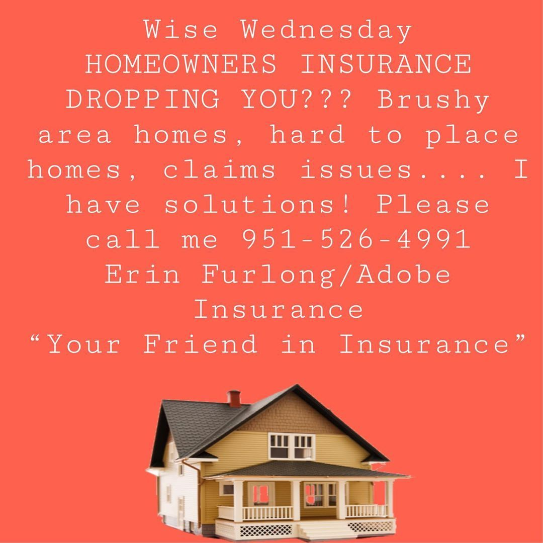 Wise Wednesday By Erin With Adobe Insurance Brushyhomes