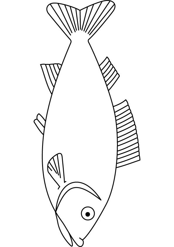 image about Printable Fish Pictures named fish layouts printable Toward print this handout be sure to click on