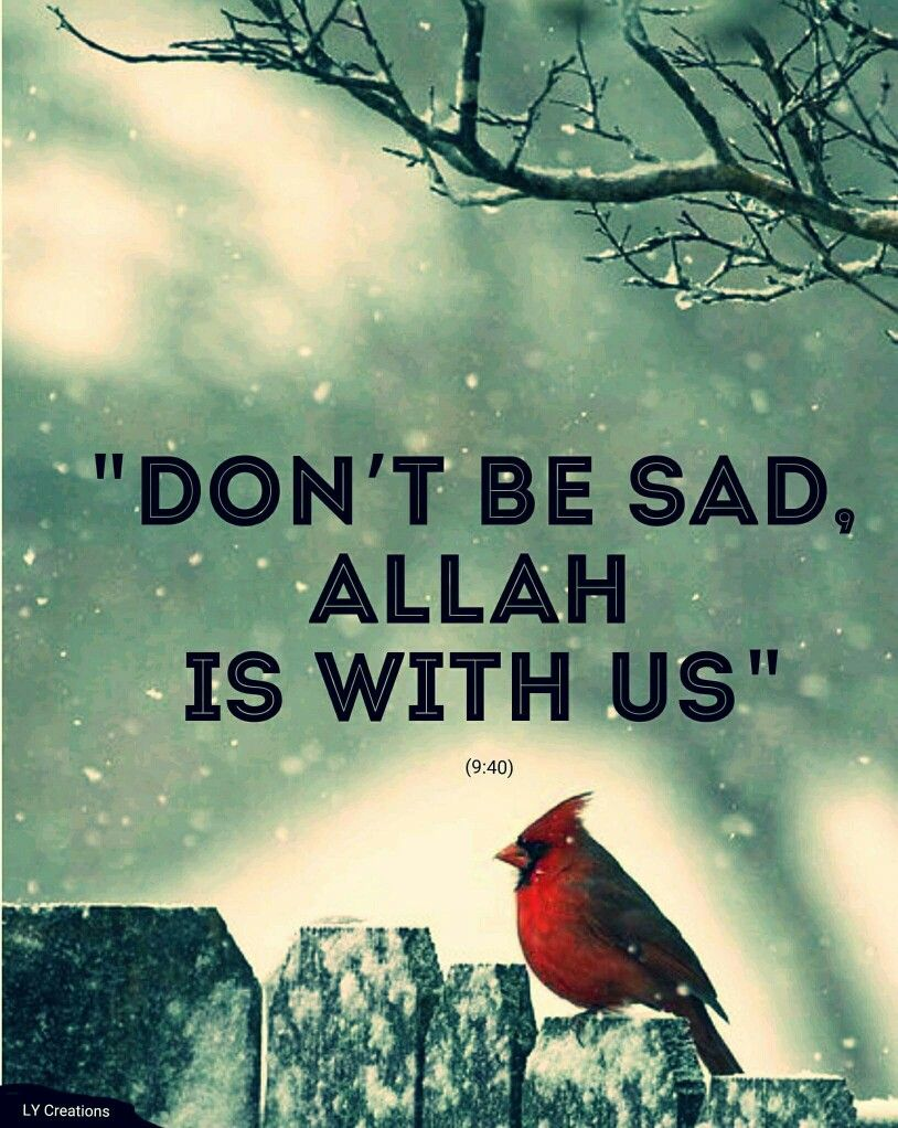 Dont Be Sad Allah Is With Us Quotes Pinterest Islam Allah