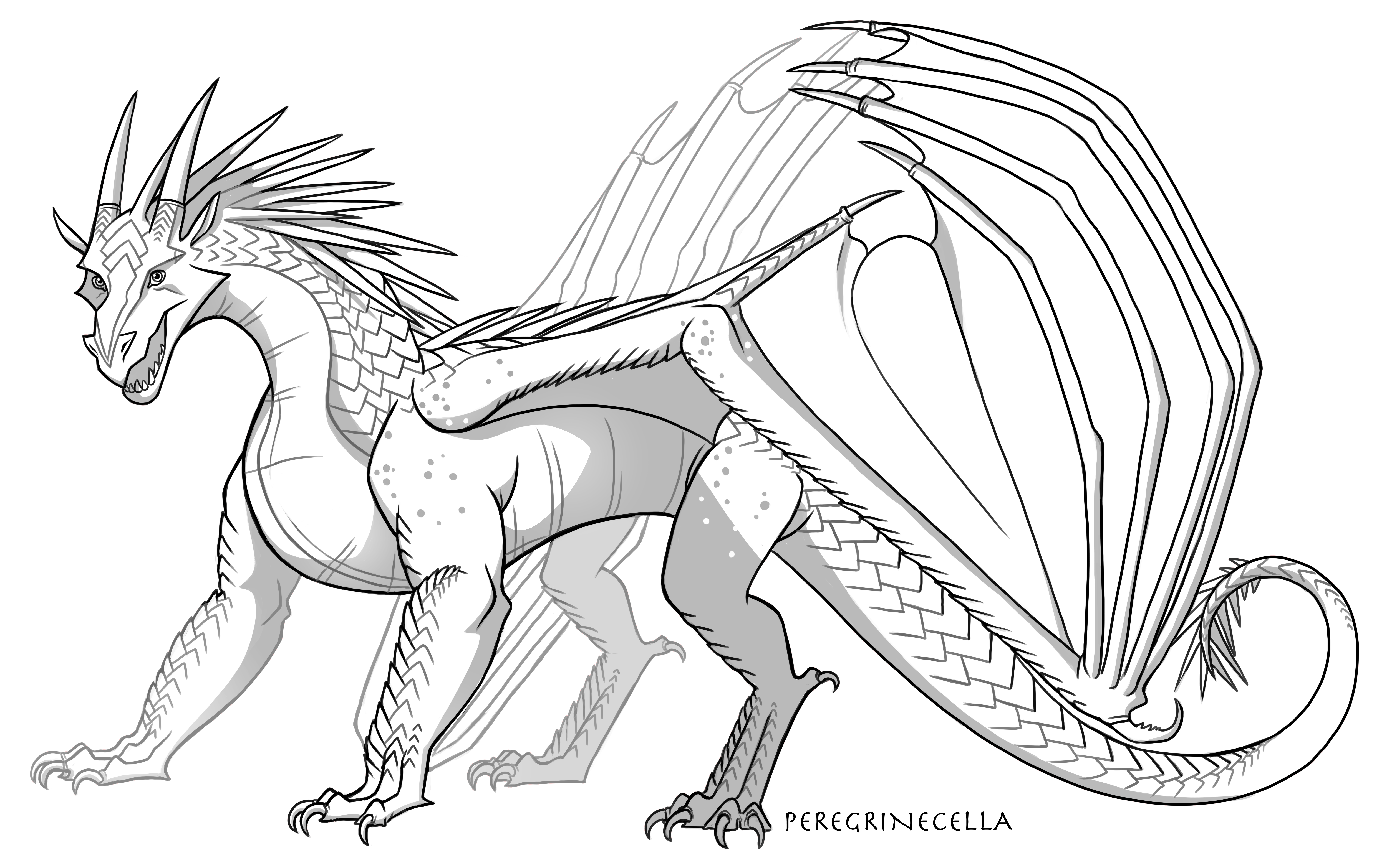 Icewing Base By Peregrinecella On Deviantart In 2020 Wings Of Fire Dragons Wings Of Fire Fire Art
