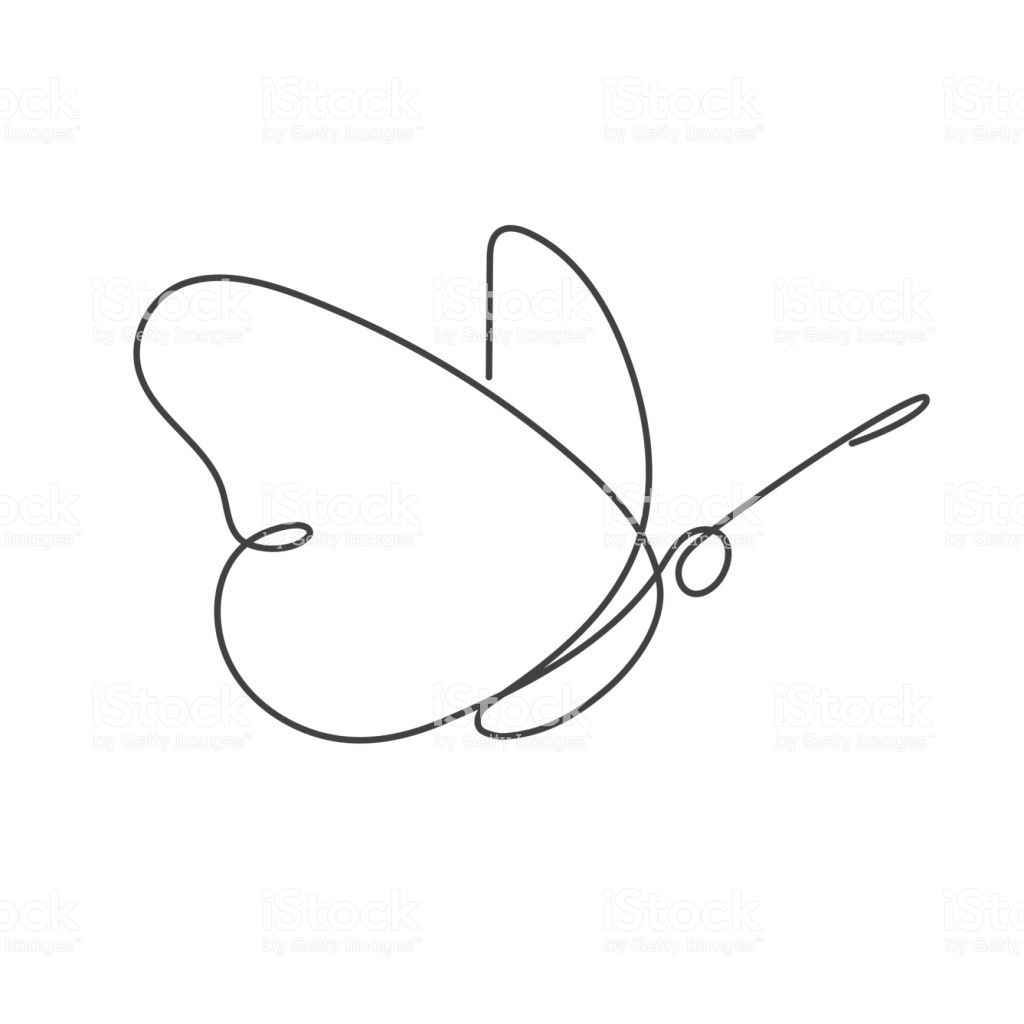 Continuous Line Butterfly Vector Illustration White One Line Butterfly Line Drawing Line Drawing Tattoos Line Drawing