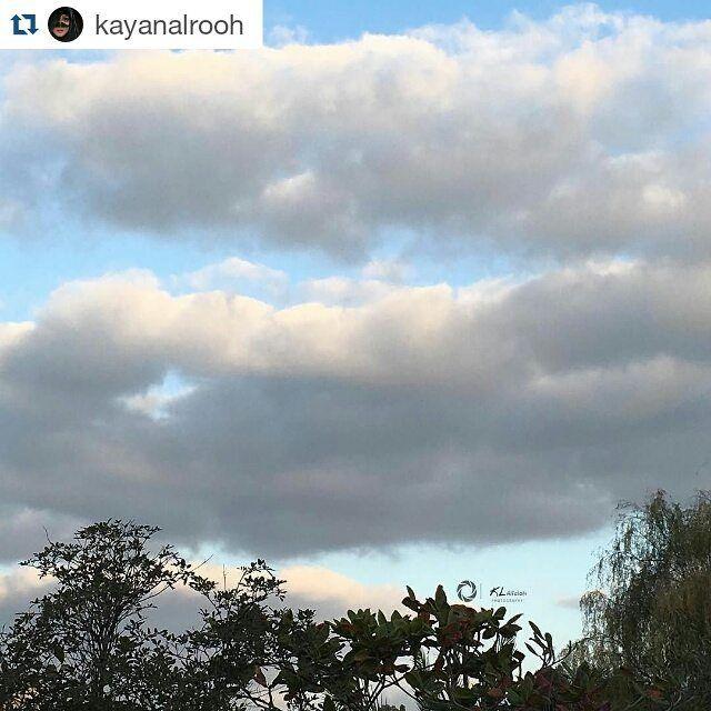 شبكة أجواء Kayanalrooh صباح النبض وعيون السحاب ورغبة الأشياء صباح الورد وترتيب الغيوم وكل مانخفي صباح أنيق يبث في و Instagram Instagram Posts Outdoor