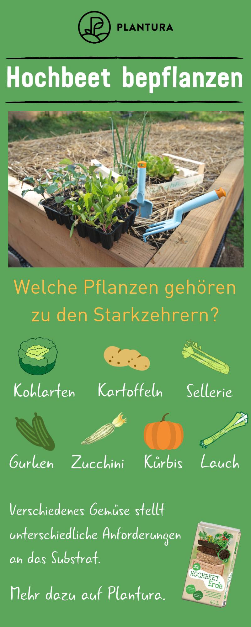 Hochbeet Bepflanzen Pflanzplan Mischkultur Grundungung Hochbeet Bepflanzen Hochbeet Und Pflanzplan