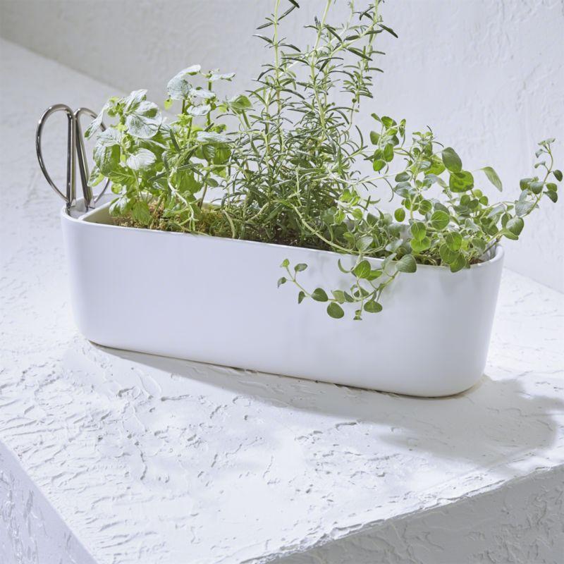 5 Blade Herb Scissors How Does Your Garden Grow Herb 400 x 300