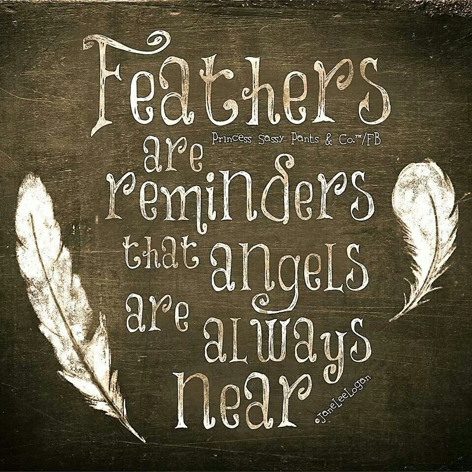 feathers & angels... | Sayings to keep & note | Pinterest | Feathers ...