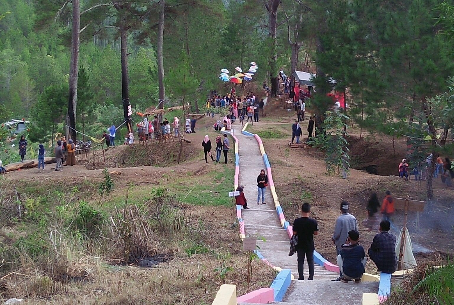 Bur Telege Aceh Wisata Hutan Pinus Yang Asri Aceh Hutan Indonesia Pinus