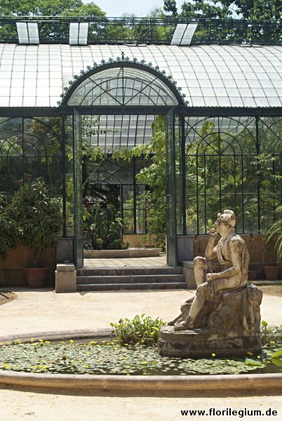 Der Botanische Garten (Orto botanico) von Palermo, Sizilien  http://www.florilegium.de/blog/gaerten/der-botanische-garten-palermo-sizilien.html