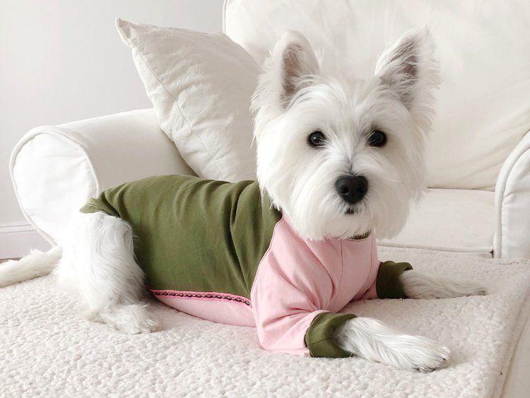 Sanky Long Sleeve Tee Westie Puppies Westie Dogs Cute Dogs