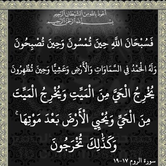 ١٩ ١٧ Arabic Calligraphy Calligraphy Quran