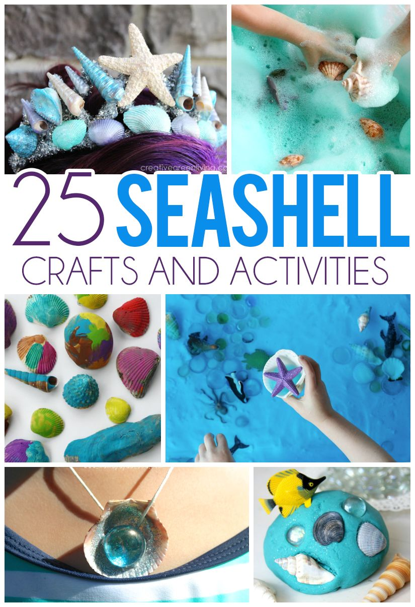 9abc8d296ef 25 Seashell Crafts   Activities For Kids