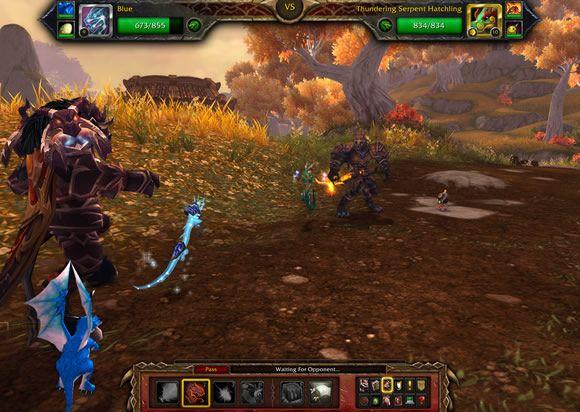 Pvp Pet Battle With Images Pets Battle Warcraft
