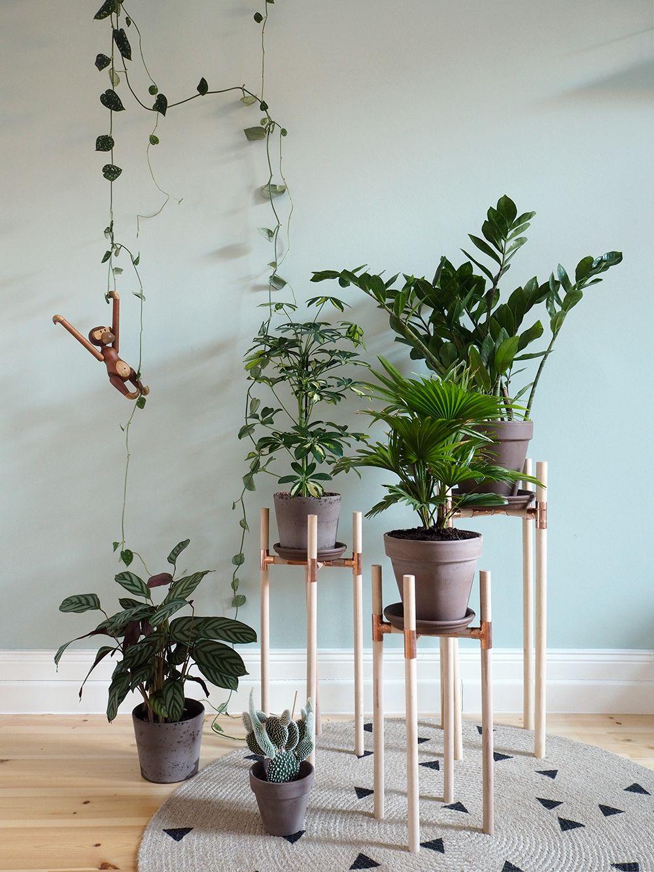 Dschungel zu hause diy pflanzenst nder aus kupfer und holz wohnen mit pflanzen holz - Dekoration dschungel ...