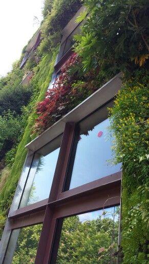 Vertical garden in Paris ♡