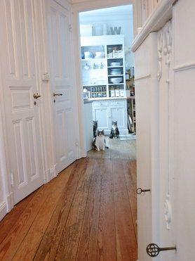 Wohnideen Flur Altbau warten auf s mittagessen altbau holzdielen interior cats