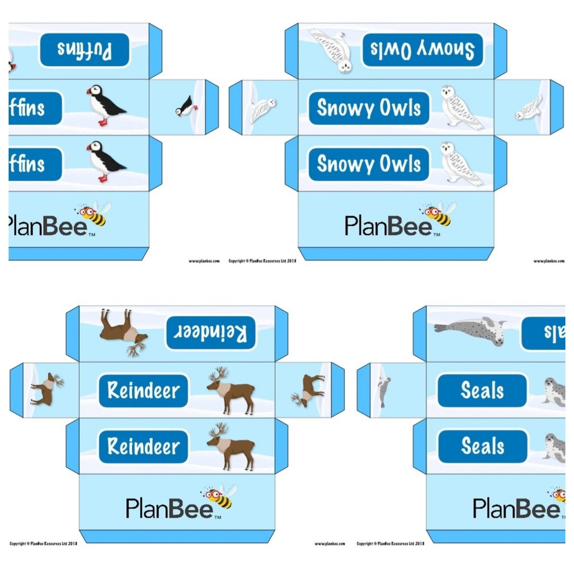 Arctic Animals Group Name Labels | Free Resources | Arctic animals