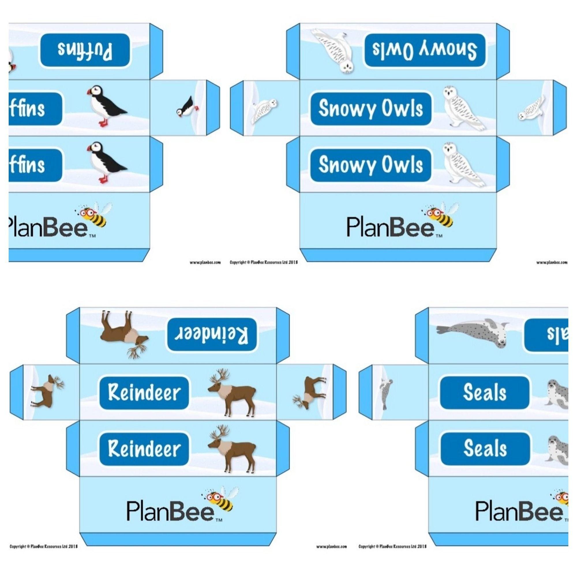 Arctic Animals Group Name Labels Arctic animals, Name