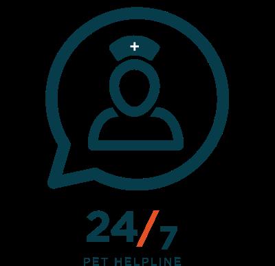 Pet Insurance For Dogs Cats Pets Best Pet Insurance Reviews Pet Health Pet Health Insurance