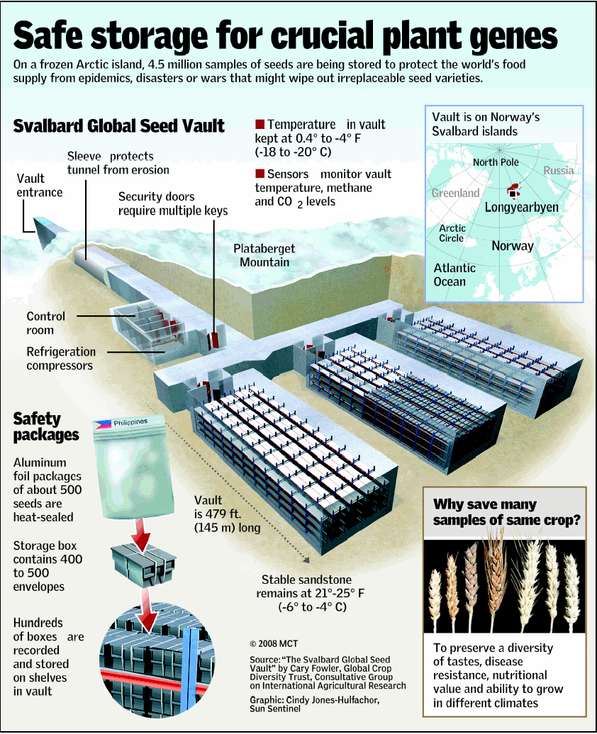 Pin By Matthewkeen16 Matthewkeen16 On Infographic Seed Vault Seeds Doomsday Prepping Survival