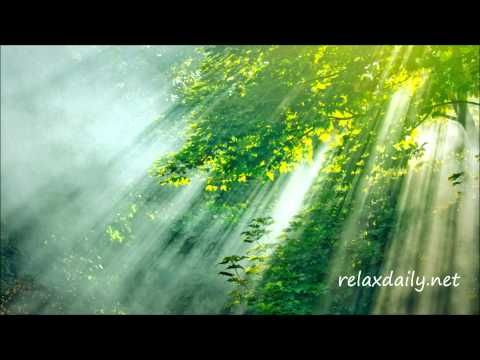 Relaxing Piano Music Work Study Meditation Relaxdaily N 045 Youtube Piano Music Nature Sounds Through The Looking Glass