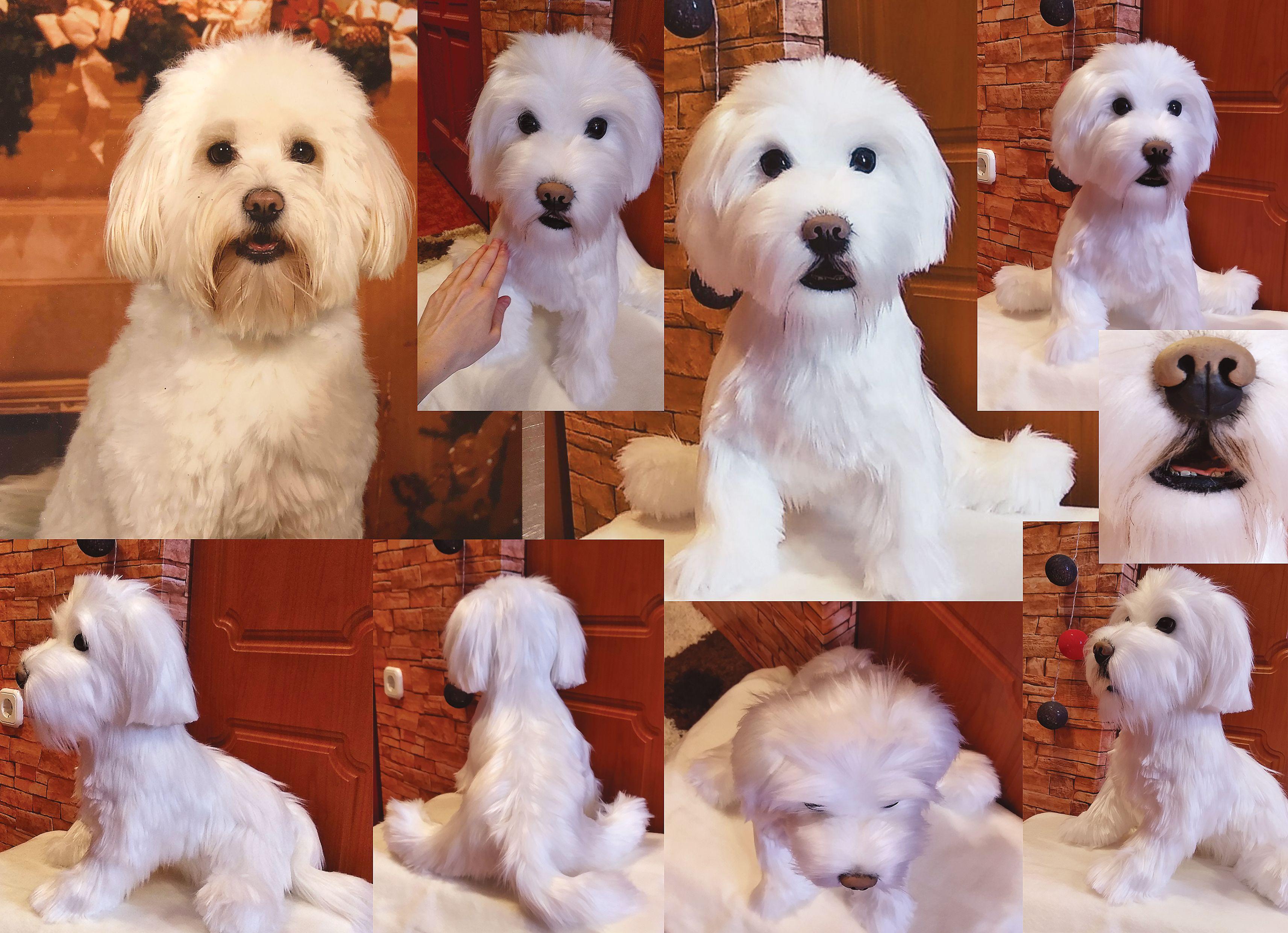 Custom Pet Portrait Toy Realistic Bichon Havanese Plush Dog Toy Dog Stuffed Dog Handmade Puppy Dolls Personalized Custom Pets Plush Dog Toys Plush Dog Cat Plush Toy