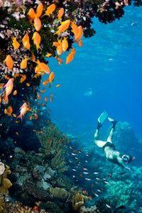 Buck Island Snorkeling St Croix